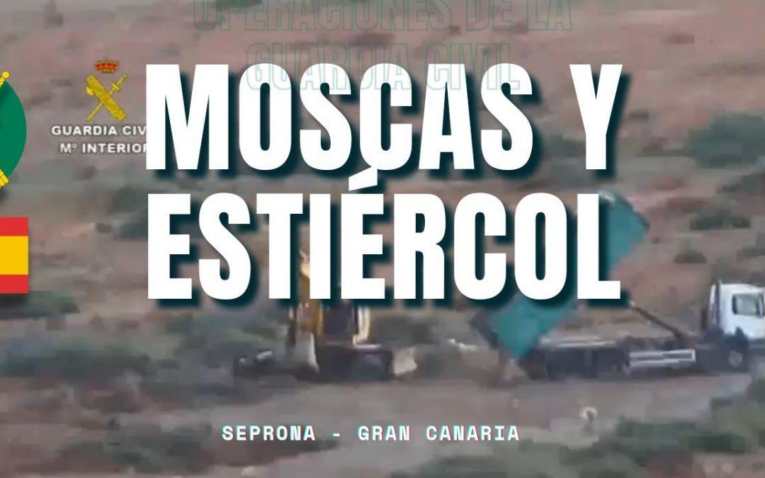 Alta politica europea y Operacion Stercus imagen 1080x675 - Autonomías